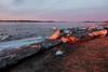 Moose River shoreline looking up river at sunrise 2011 May 1st