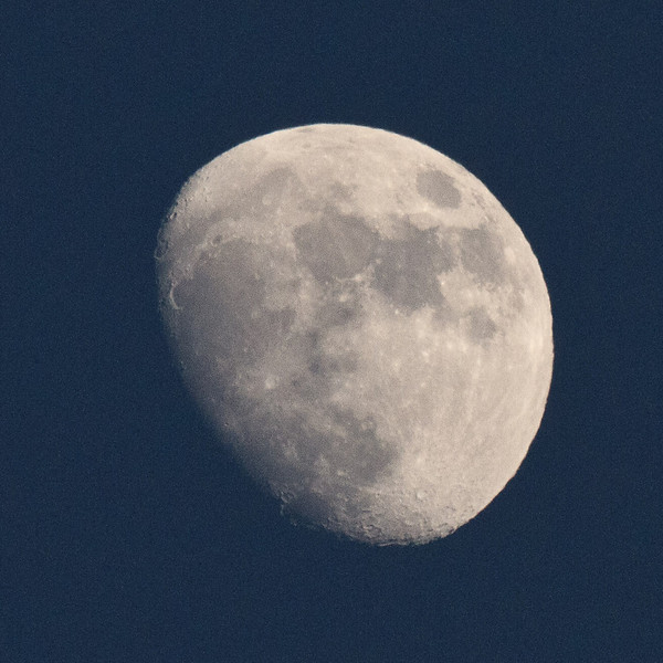 Moon in the evening sky 2011 May 13