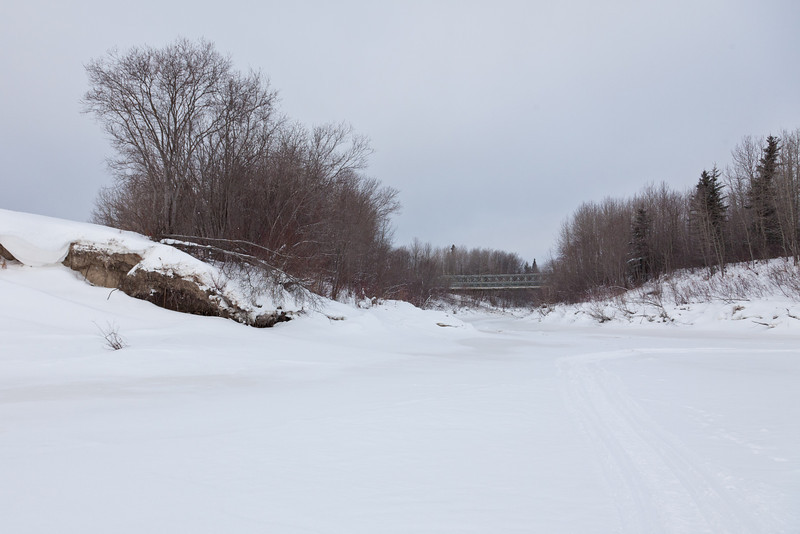 Mouth of Butler Creek seen from the Moose River.