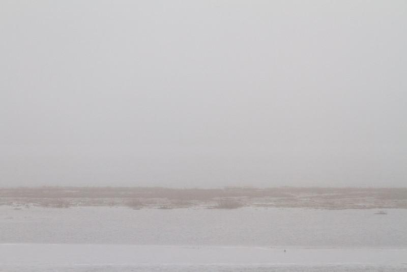 2011 May 13 fog looking towards sandbar