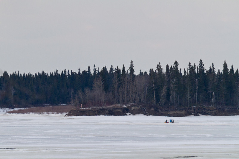 2011 April 13th snowmobile taxi approaches the Gutway on its way to Moose Factory.