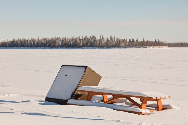 Bear proof garbage box and picnic table
