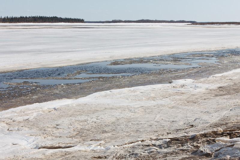 Shoreline looking upstream