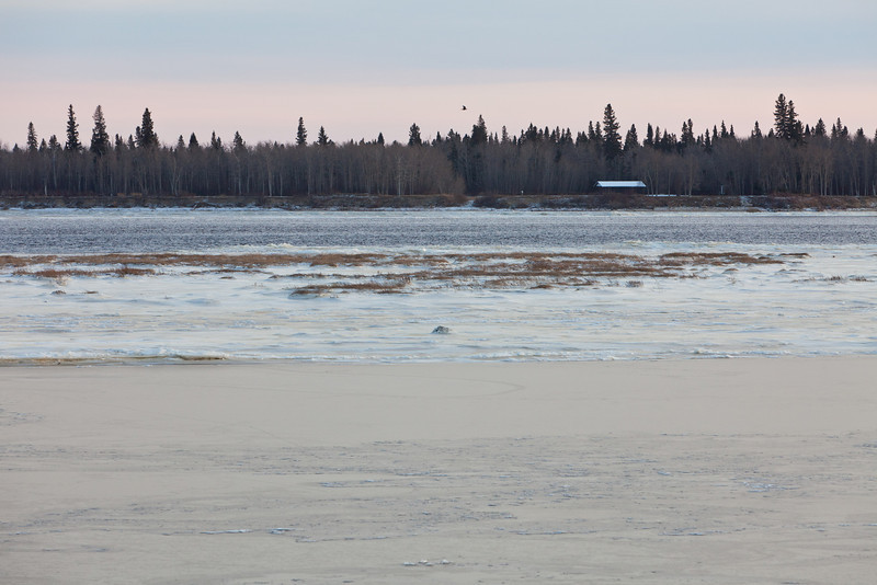 looking across the Moose River towards Charles Island. Ice covers the river except in front of the island.