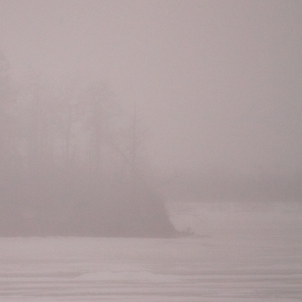 Butler Island int he distance in morning fog