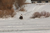 Leo Etherington on snowmobile on the Moose River going up the bank.