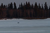 Two people walking on the Moose River in front of Tidewater Park.