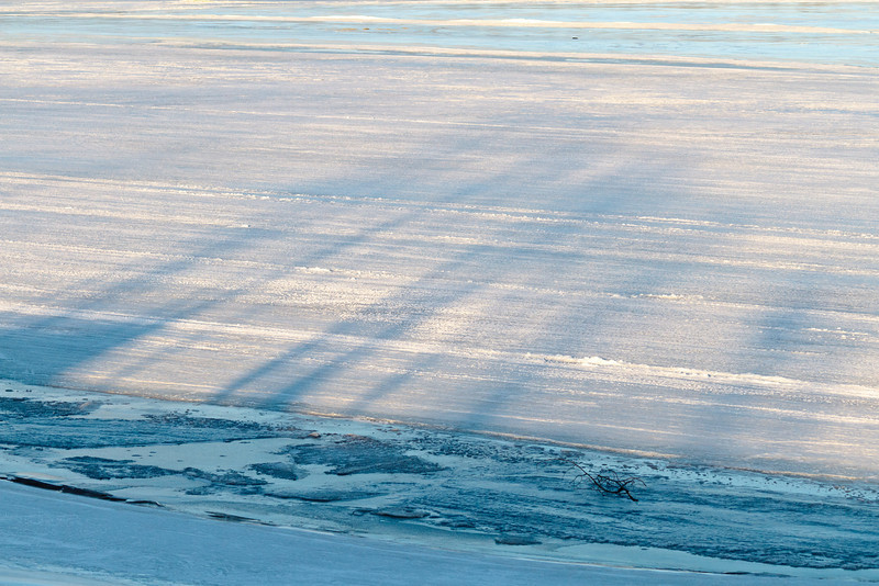 Shadows of trees on the ice of the Moose River 2011 April 14th.