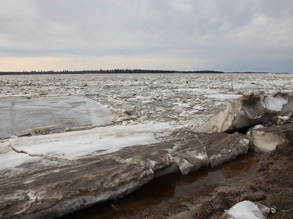 Spring breakup of the Moose River at Moosonee, Ontario. Ice and debris floating down the river and out to James Bay.