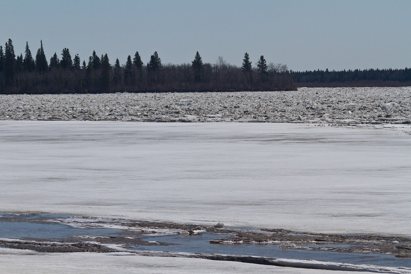 Looking towards south end of Butler Island across the Moose River