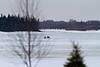 Seen through trees newly planted on river bank, snowmobile taxi heads to Moose Ractory 2011 April 13th