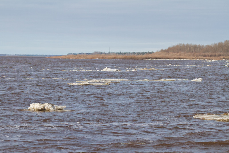 Ice floes coming from up river