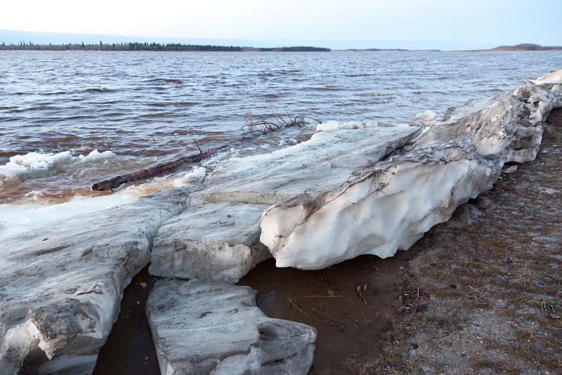 Shore ice and debris 2011 May 2nd