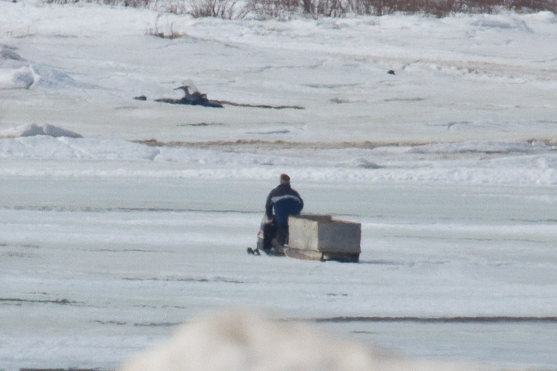 Snowmobile and sled heading across the Moose River from Moosonee to Moose Factory 2011 April 10th. Temperature is 5C. Close crop of image to show another snowmobile that is stuck.