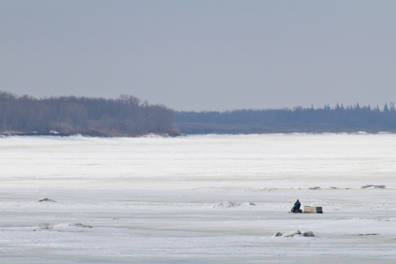 Snowmobile and sled heading across the Moose River from Moosonee to Moose Factory 2011 April 10th. Temperature is 5C.