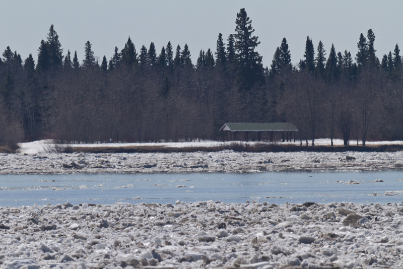 Tidewater Park on Charles Island, ice is flowing in front of the island.