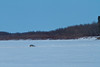 """Vehicle on the """"north"""" road to Moose Factory."""