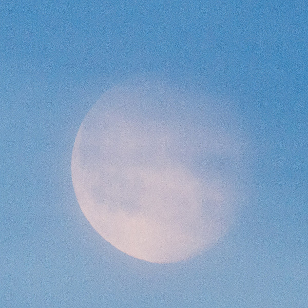 Moon in the morning sky around sunrise 2011 April 20th