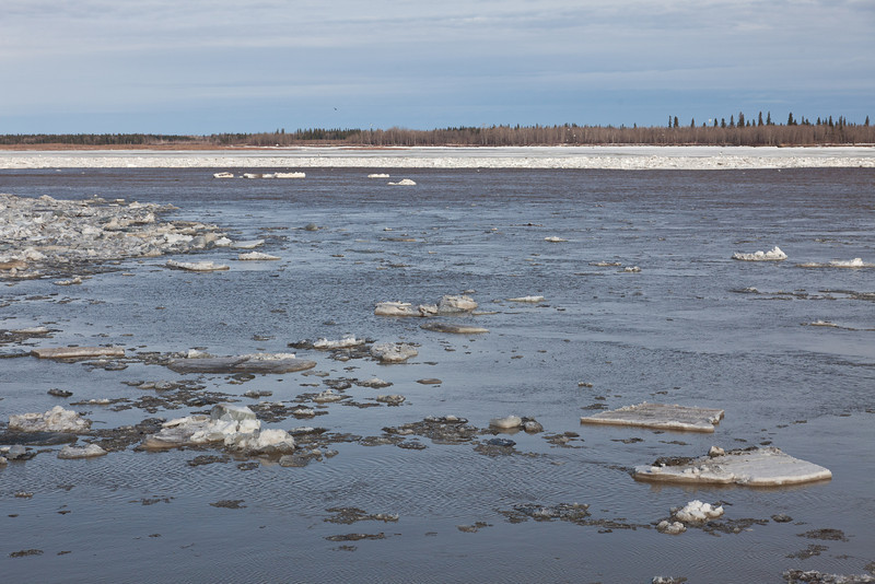 Ice and water on the Moose River seen from south of the mouth of Store Creek towards McCauley's Hill 2011 April 28th