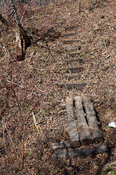Foot bridges and steps in the bush along Henry Crescent.