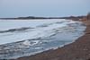 Moose River shoreline looking up river