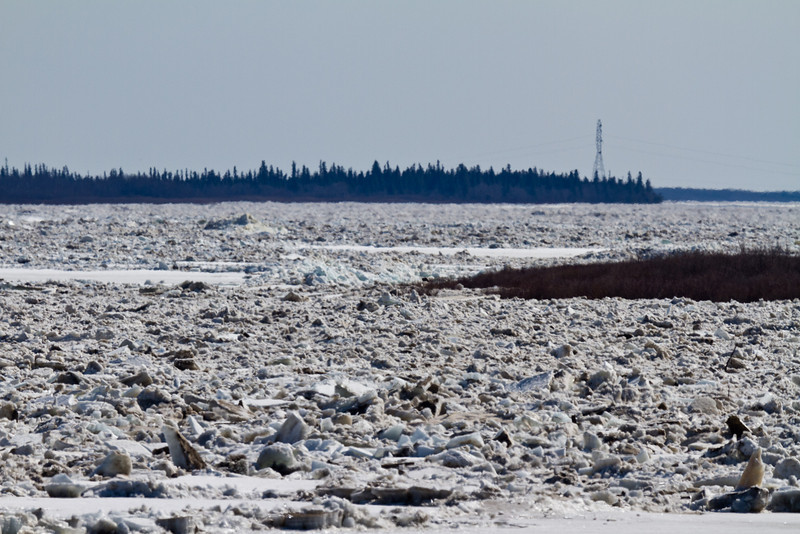 View up the Moose River towards hydro towers