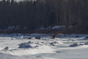 Aircraft parked on the Moose River 2011 April 1