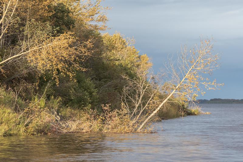 Mouth of Butler Creek in Moosonee.