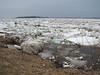 Ice along shoreline near Polar Bear Lodge