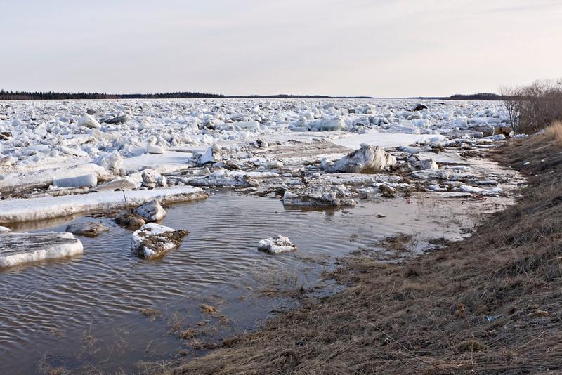 View upstream along shore of the Moose River in Moosonee