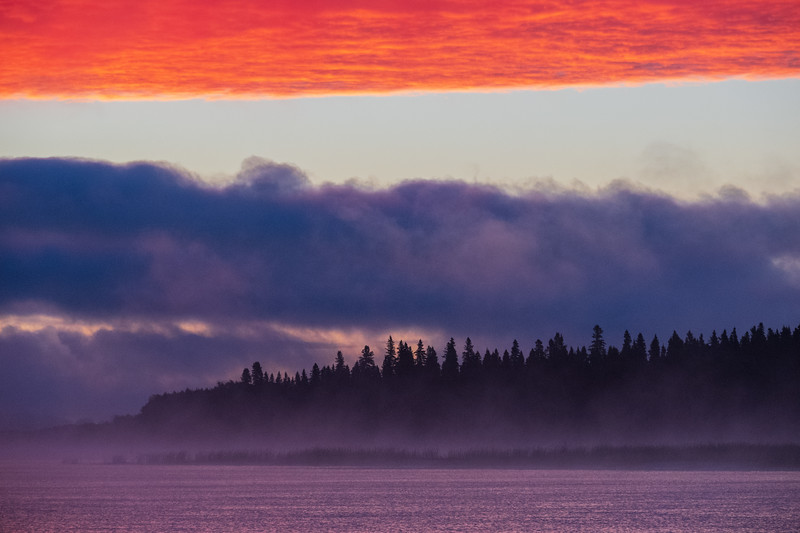North end of Butler Island with morning fog before sunrise 2018 August 10.