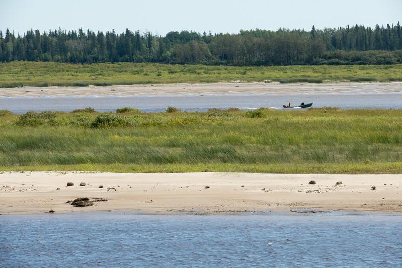 Sandbar at very low tide.