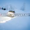 Arctic Lapland 2016-2663