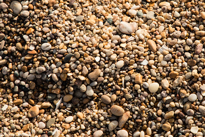 Slapton Beach - Detail