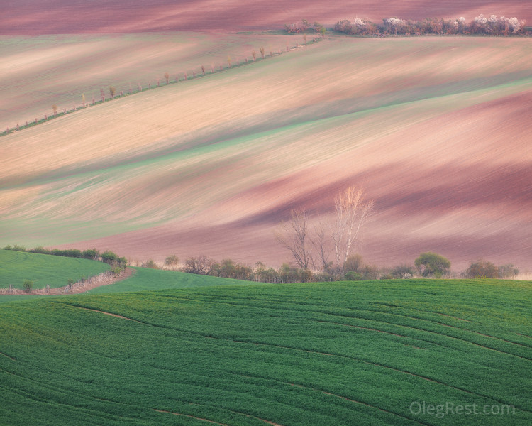 Colors of Moravia
