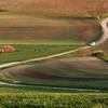 Road in Moravia