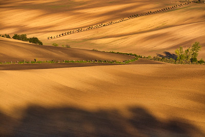 Autumn light and shadow in countryside