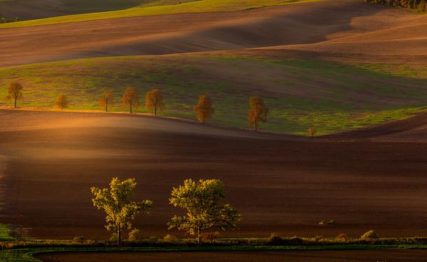 Autumn sunrise in the fields