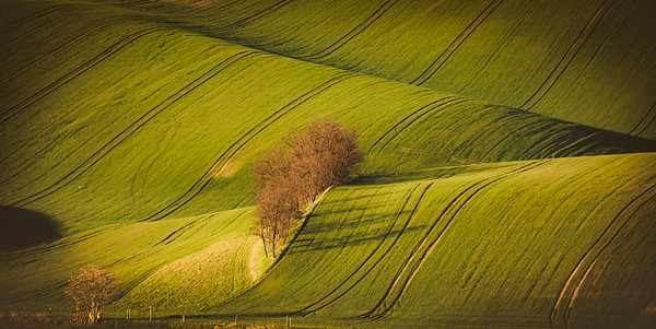 Touch of the first sun rays in landscape