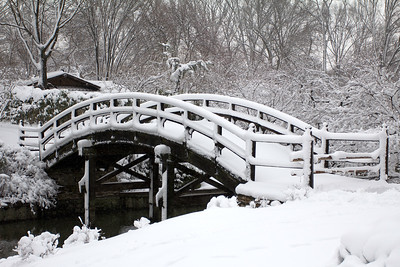 Drum Bridge, Missouri Botanical Garden