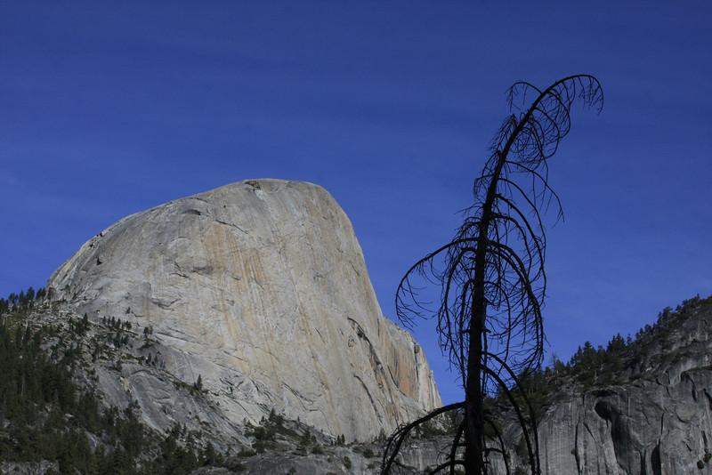 Back of Half-dome - Yosemite CA