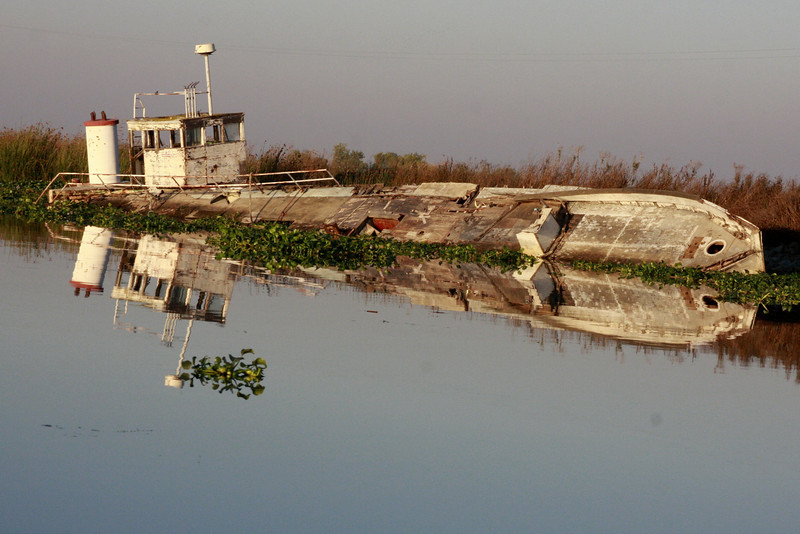 Rotting boat in the Sacramento Delta, CA