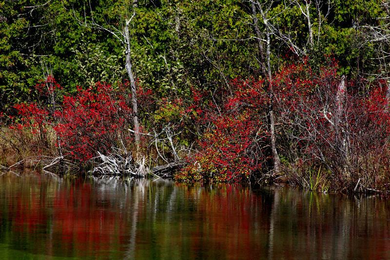 Torch Lake, MI