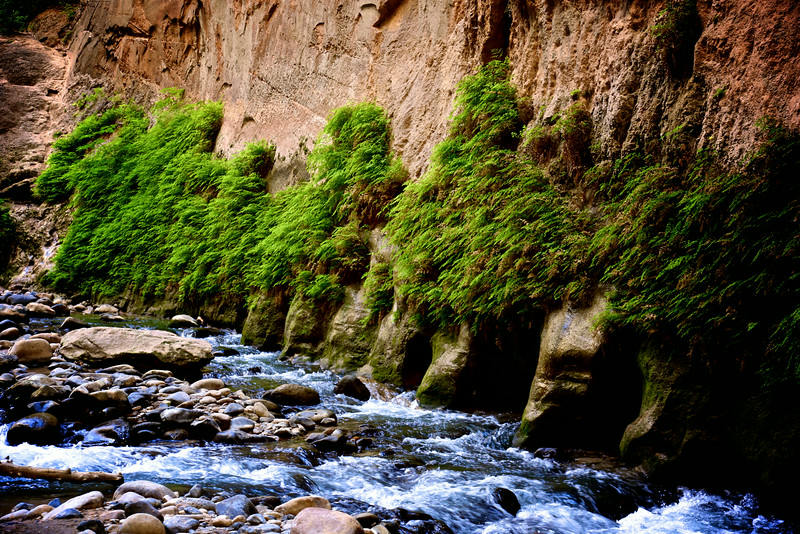 Zion National Park -  The Narrows