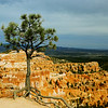 Bryce Canyons National Park