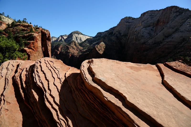 Zion National Park -  Angles Landing