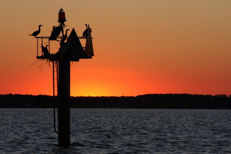 Chesapeake Bay MD Sunset