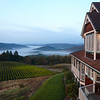View from Youngberg Hill Vineyards & Inn - Willamette Valley, Oregon