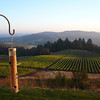 Youngberg Hill Vineyards & Inn - Willamette Valley, Oregon - fantastic B&B