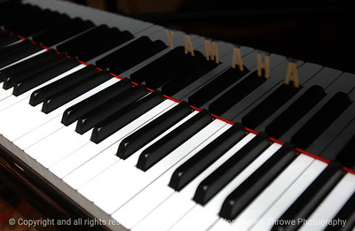 015-piano-dsm-30jan06-9110